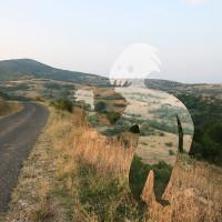 Paysages Hybrides 7/8